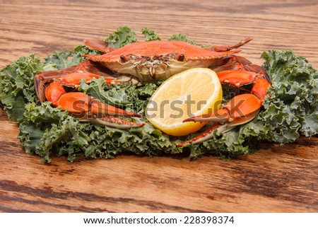 Steamed Blue Crab, one of the symbols of Maryland State and Ocean City, MD with lemon slice and garnished with kale on a wooden table - stock photo