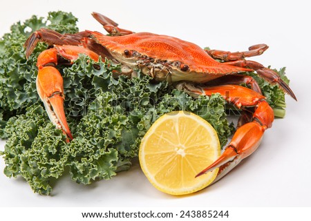 Steamed Blue Crab with lemon slice and garnished with kale on white background - stock photo