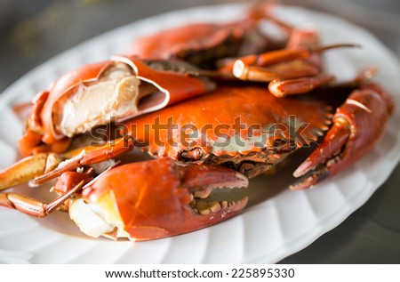 Steamed crab in plate - stock photo