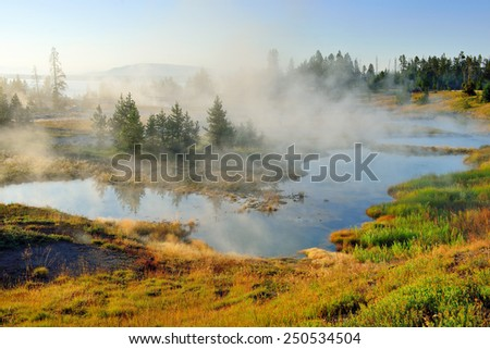 steaming geysers in West Thumb area in Yellowstone National Park, Wyoming - stock photo