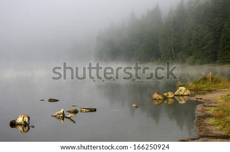 Steamy lake and misty forest - stock photo