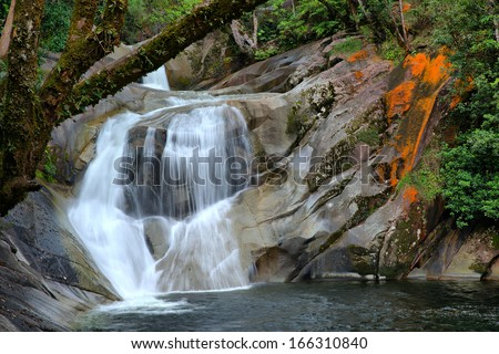 steamy rainforest at the Josephine Falls, near Cairns, Queensland, Australia - stock photo
