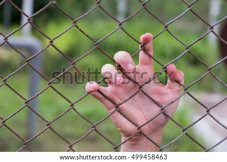 Steel cage and freedom