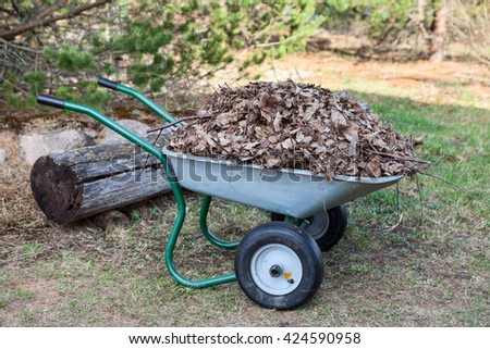 Steel wheelbarrow standing on green lawn full of dry leaves - stock photo