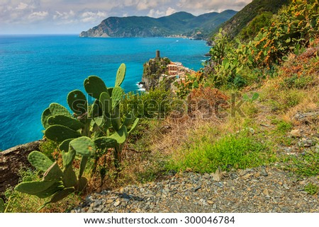 Steep coastline with cactus plants and Vernazza village panorama,Cinque Terre National Park,Liguria,Italy,Europe