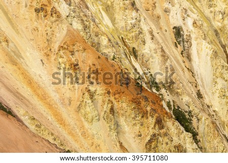 Steep, golden and amber walls of Grand Canyon of the Yellowstone River, with pine trees, Wyoming. - stock photo