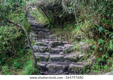 Steep trail leading to Machu Picchu mountain, Peru