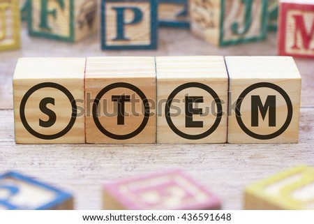 STEM word written on wood cube - stock photo