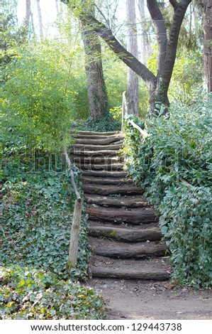 Step way in the early spring park - stock photo