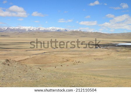 Steppe pasture against the sky and mountains