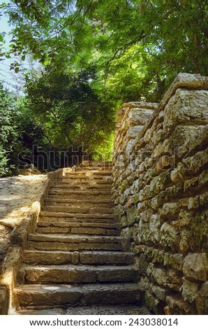 Steps Along The Stone Wall