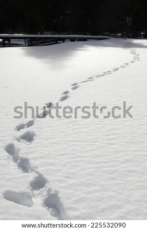 steps on snow - stock photo