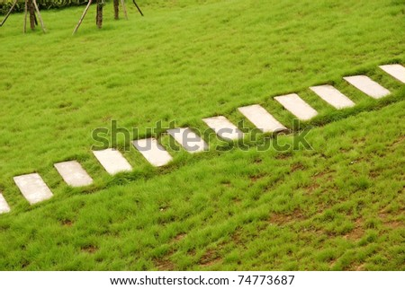 Steps with grass lawn