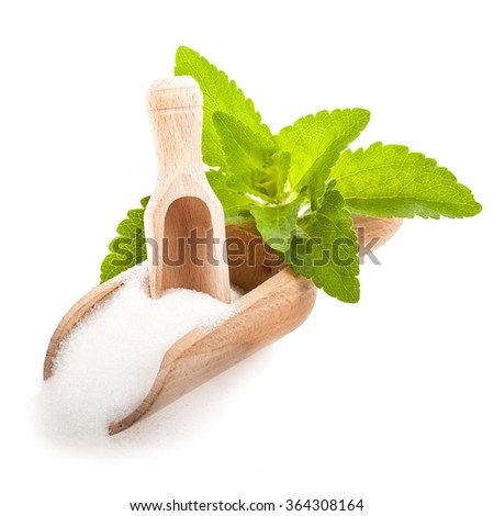 Stevia - plant stevia rebaudiana, green leaves and crystals  a wooden scoop  isolated on white background