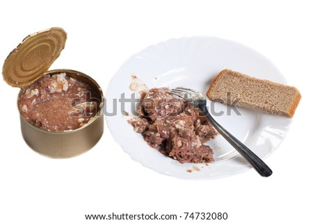 stewed meat and bread - stock photo