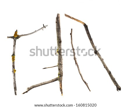Sticks and twigs isolated on white background - stock photo