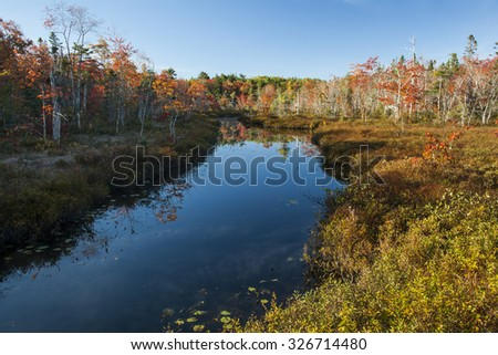 Still Autumn Stream in Nova Scotia, Canada. - stock photo