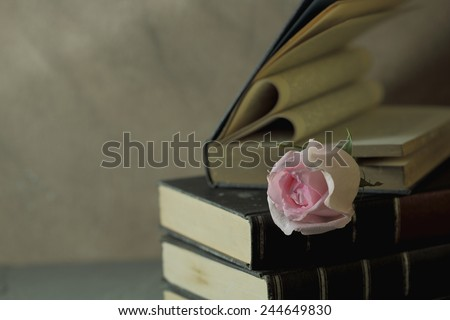 Still life art photography love concept with pink rose vintage book pages love heart sign on grunge selective focus - stock photo