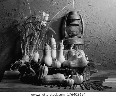 Still life art photography on raw fancy pumpkins with skull black and white version with film grain - stock photo