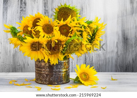Still Life. Bouquet of sunflowers in old tin