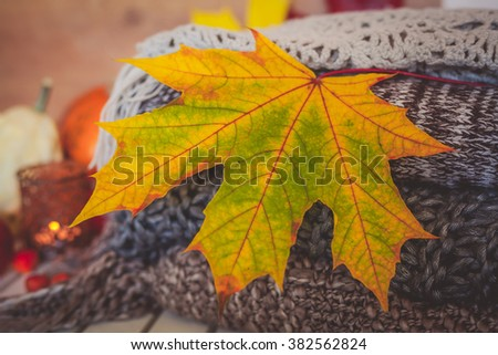 Still life decoration with dry leaf and woolen scarves - stock photo