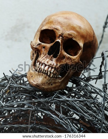 Still life fine art photography on human skeleton criminal concept with barbed wire - stock photo
