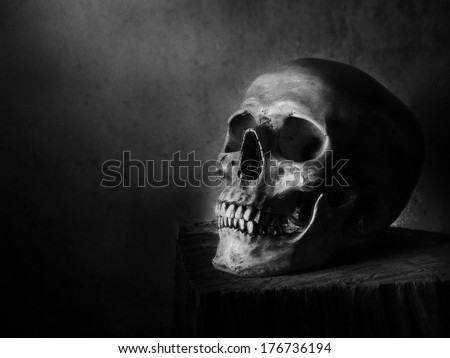Still life fine art photography on human skeleton on wood log and red background black and white version with film grain - stock photo