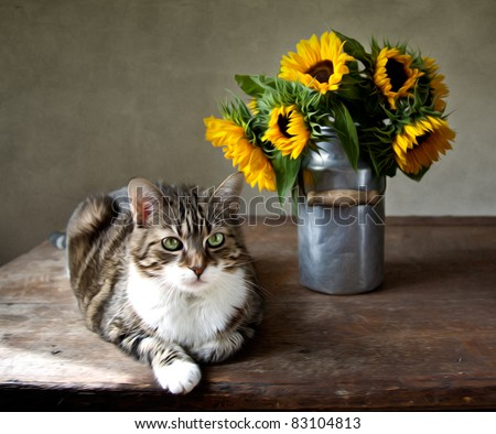 Still-Life illustration in oil painting style of cat and sunflowers - stock photo