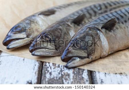 Still Life Mackerel Fish On A old wood Table - stock photo