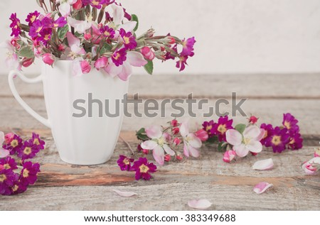 Still life of apple blossom flowers - stock photo