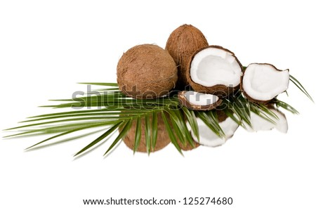 still-life of  coconut with  olive-branch on white background, isolated - stock photo