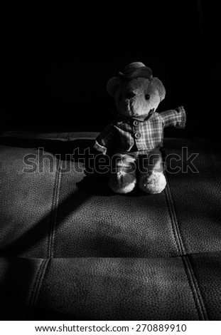 still life of cowboy bear on black and white - stock photo