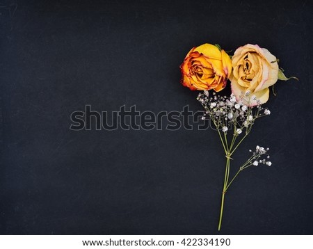 Still life of dead rose buds on black background - stock photo
