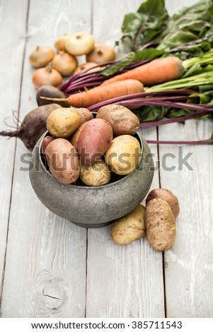 Still life of of vegetable Root crop