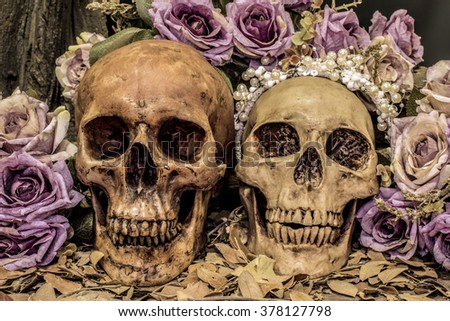 still life painting photography with couple human skull  and roses background, love concept, grunge, vintage and dark tone for horror halloween - stock photo
