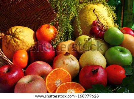 Still life photography art on mixed fruits - stock photo