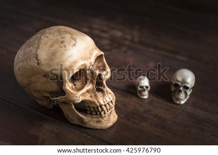 still life photography with human skull on wooden table, horror halloween concept - stock photo