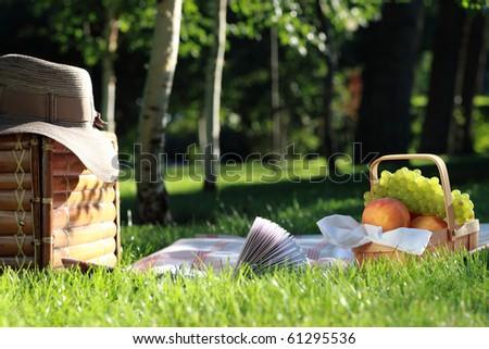 Still life picnic - stock photo
