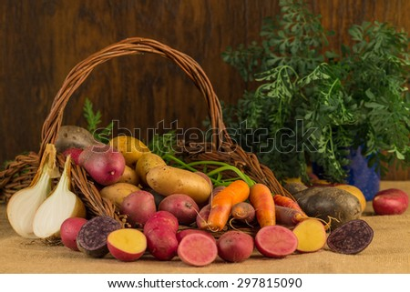 Still life - potato harvest - stock photo