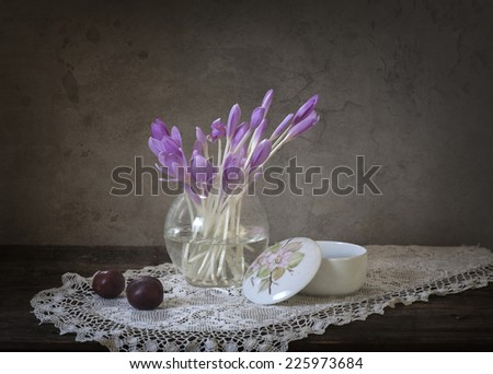still life white crocus