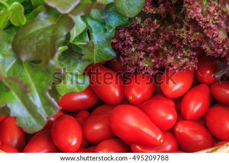 Still life wiht close up grape tomatoes and  lettuce