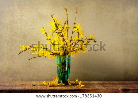 Still life with a bouquet of forsythia - stock photo