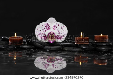 Still life with beautiful orchid and candle on pebbles - stock photo