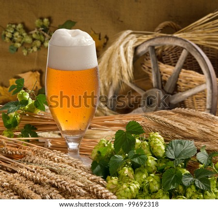 still life with beer