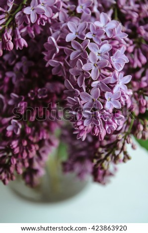 Still life with blooming spring bouquet of violet lilac flowers in vase on white background. Home decoration in a rustic style. Macro image, sweet pastel. Nature concept. - stock photo