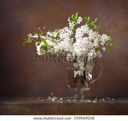 Still life with bouquet of cherry blossoms in a glass jug - stock photo