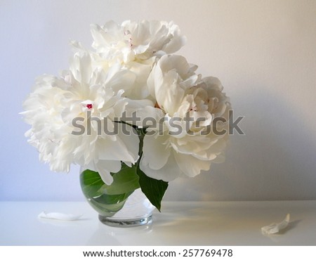 Still life with bouquet of peony flowers in a vase. Bouquet of white peonies. - stock photo