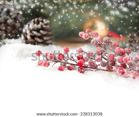 Still life with branch full of red baubles covered with snow with white space for the text - stock photo