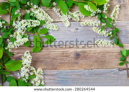 still life with branch of blossom bird cherry on vintage boards of antique table with copy space - stock photo