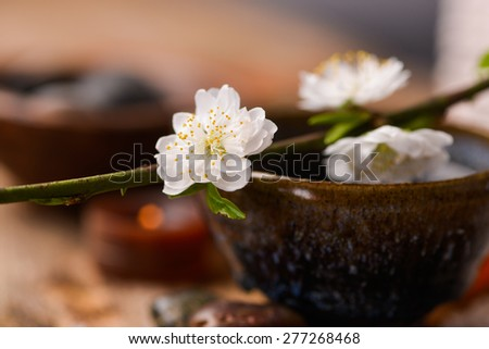 Still life with Cherry on bowl and stones ,pile of salt on old wood - stock photo